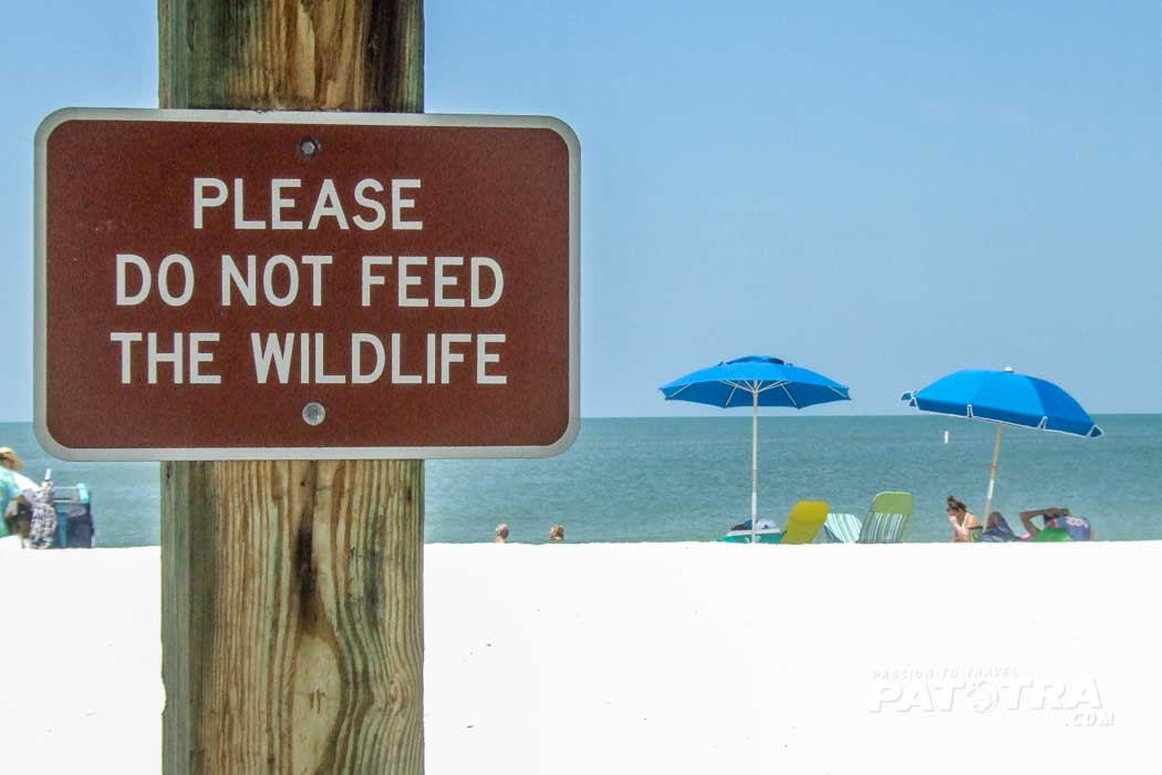Lovers Key - Do not feed the wildlife