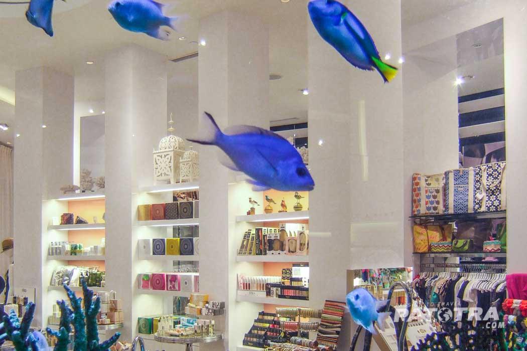 fliegende Fische im Laden