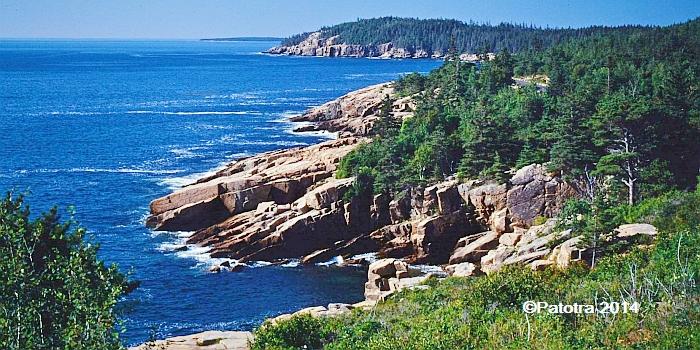Acadia Nature