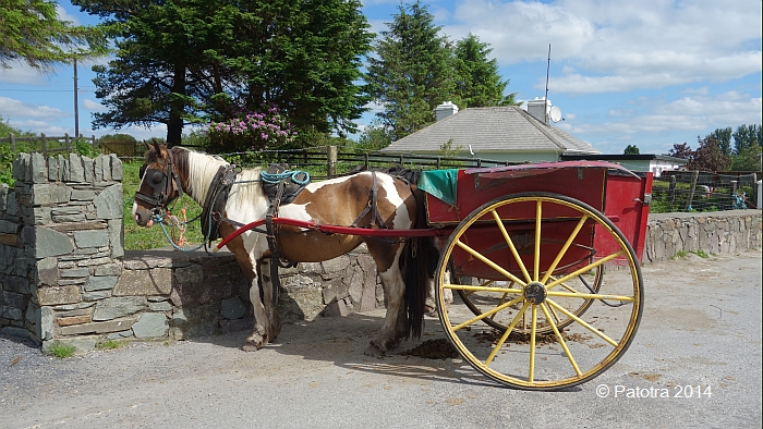 Kutsche in Killarney
