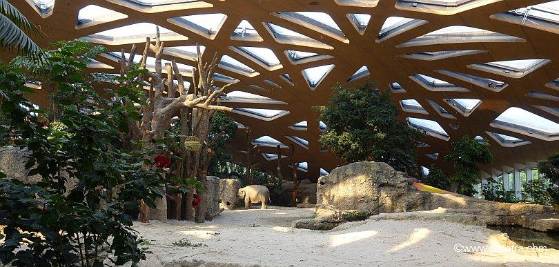 Elefantenpark Innenanlage