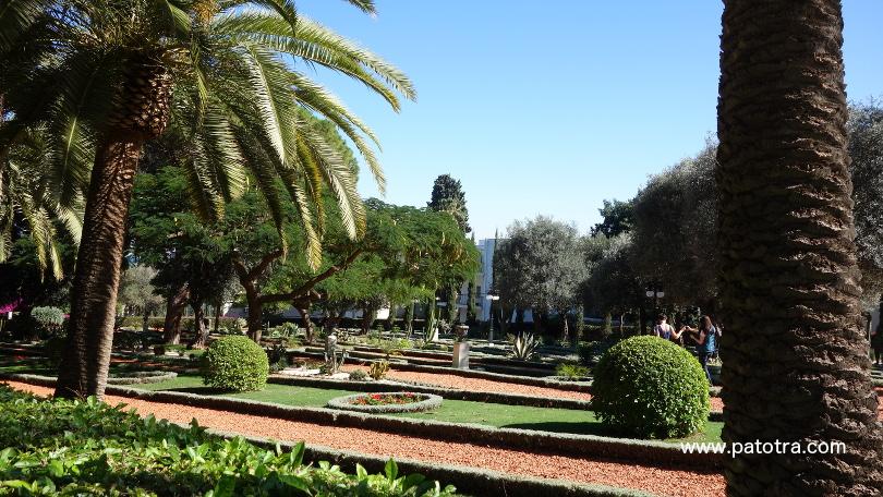 Garden Haifa