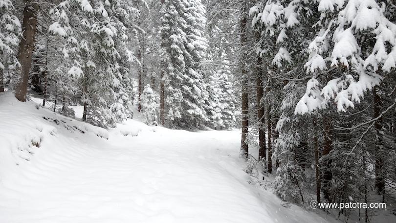 Winterzauberland Berwang