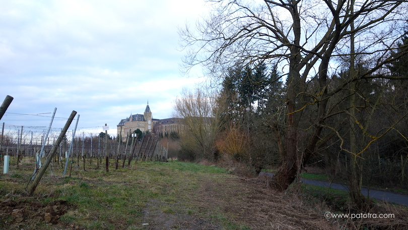 KlosterKalvarienberg