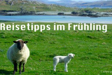 Irland Fruehling