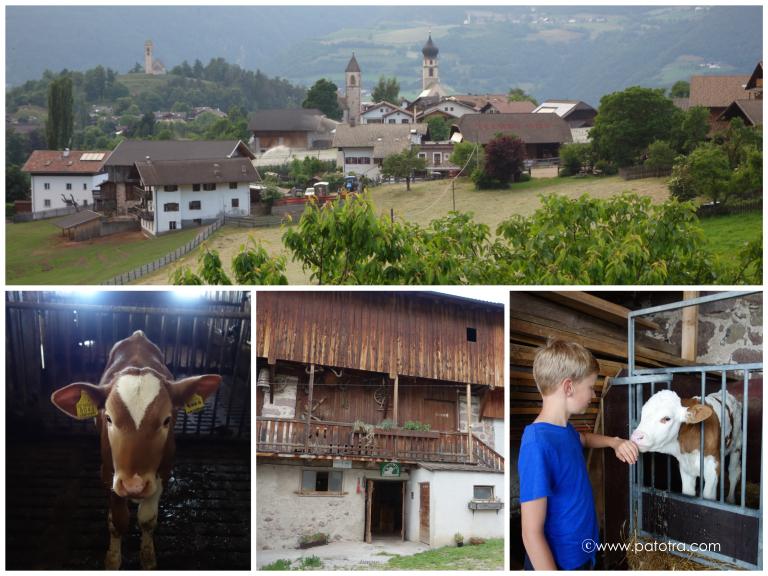 Ferien auf dem Bauernhof, Suedtirol