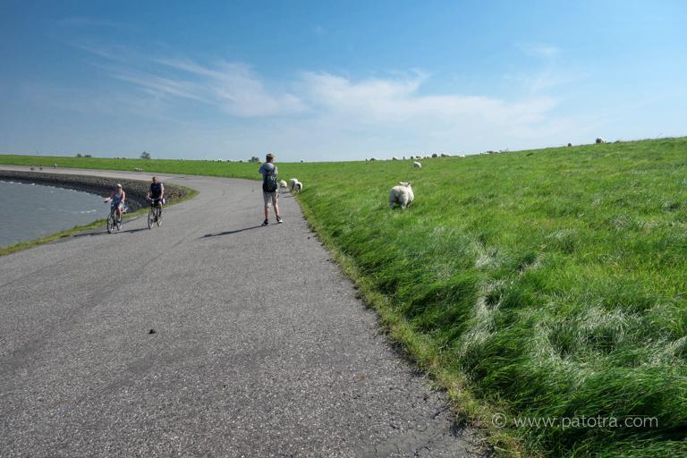 Radweg Deich