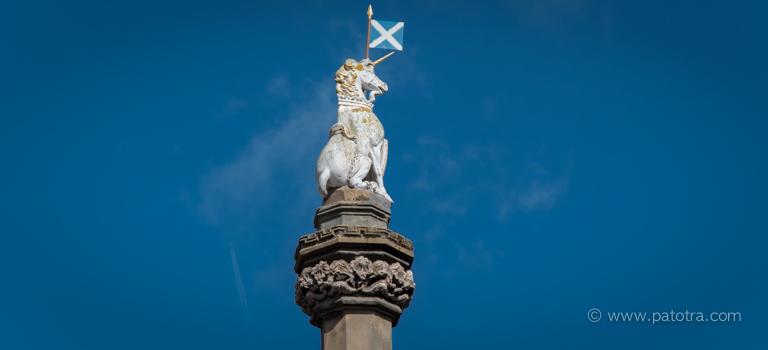 Schottland EInhorn