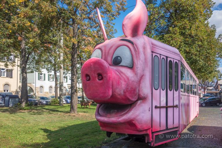 Schweine Tram Stuttgart