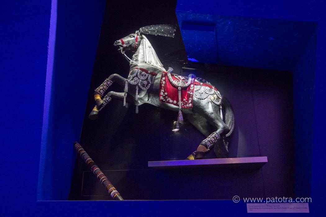 Blaue Kammer Pferd