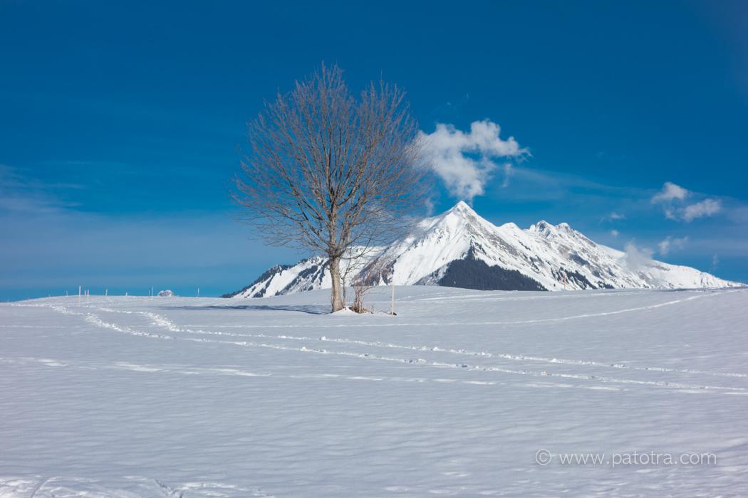 Alpes Leysin