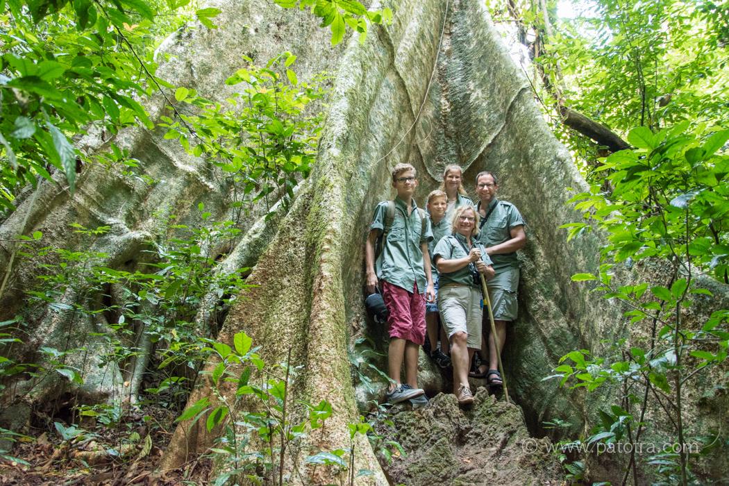 Dschungeltrekking Khao Sok