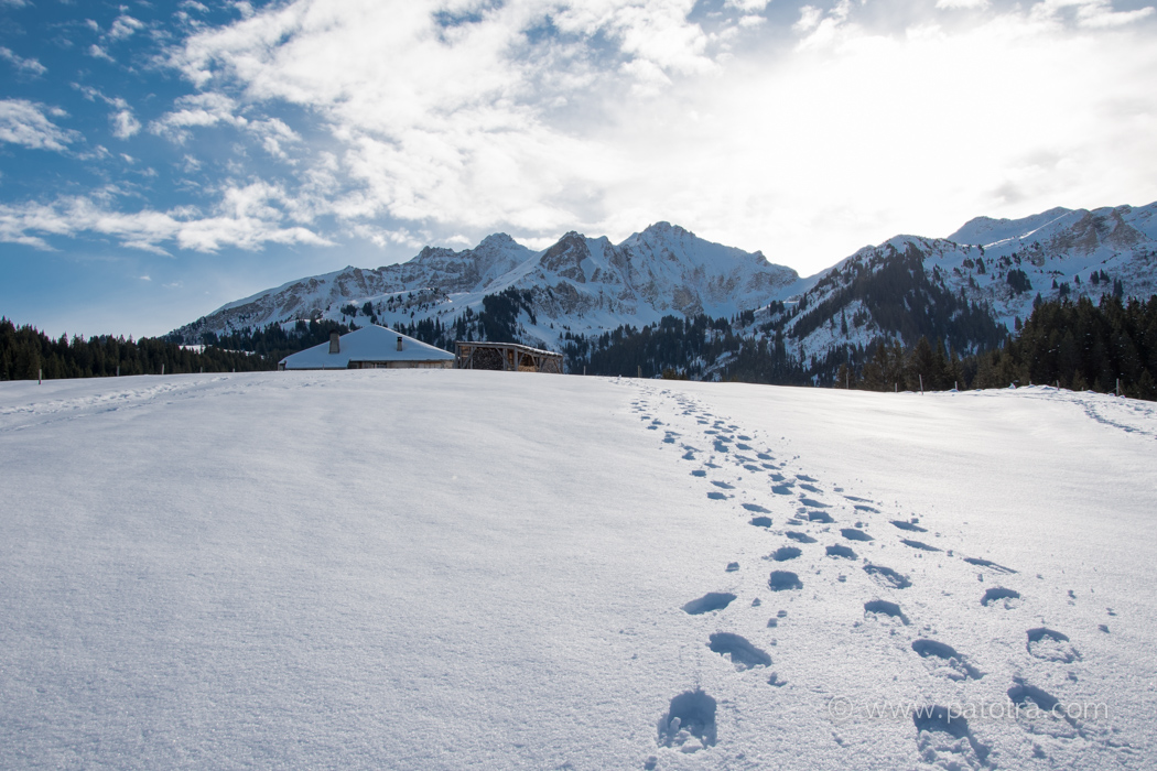 Alpen Waadt
