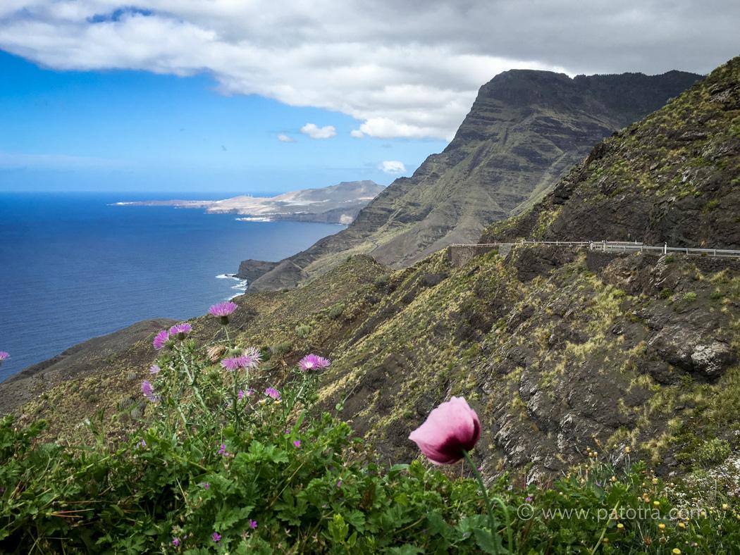 Klippen Gran Canaria