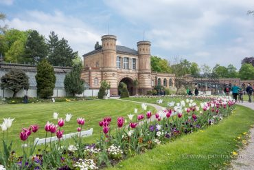 Botanischer Garten KA
