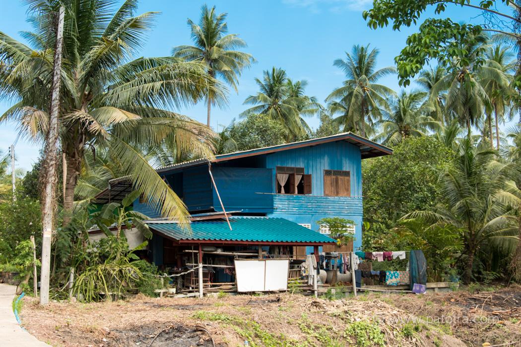 Kokosnusfarm Bangkok