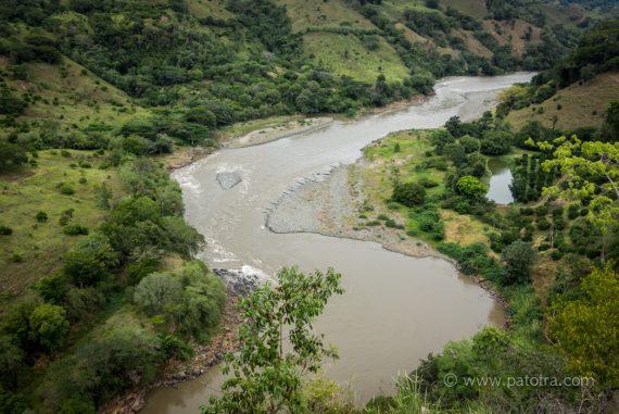 Nilpferde in Kolumbien