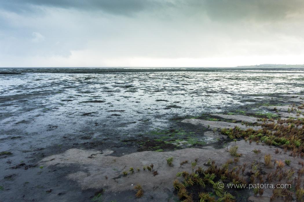amrum-wattenmeer