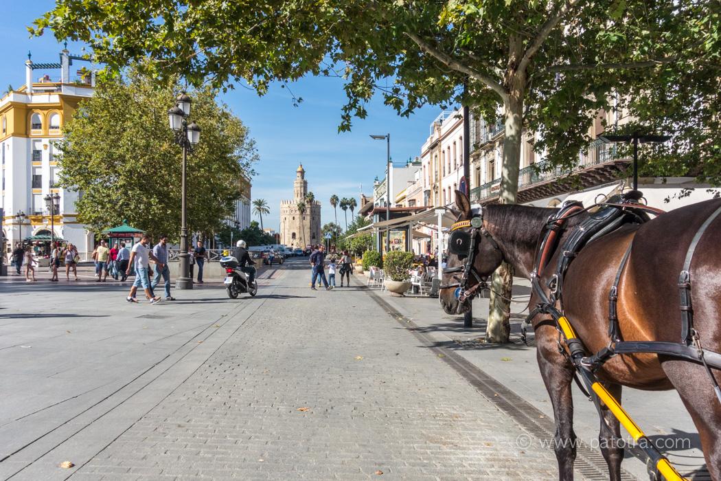 Goldener Turm Sevilla