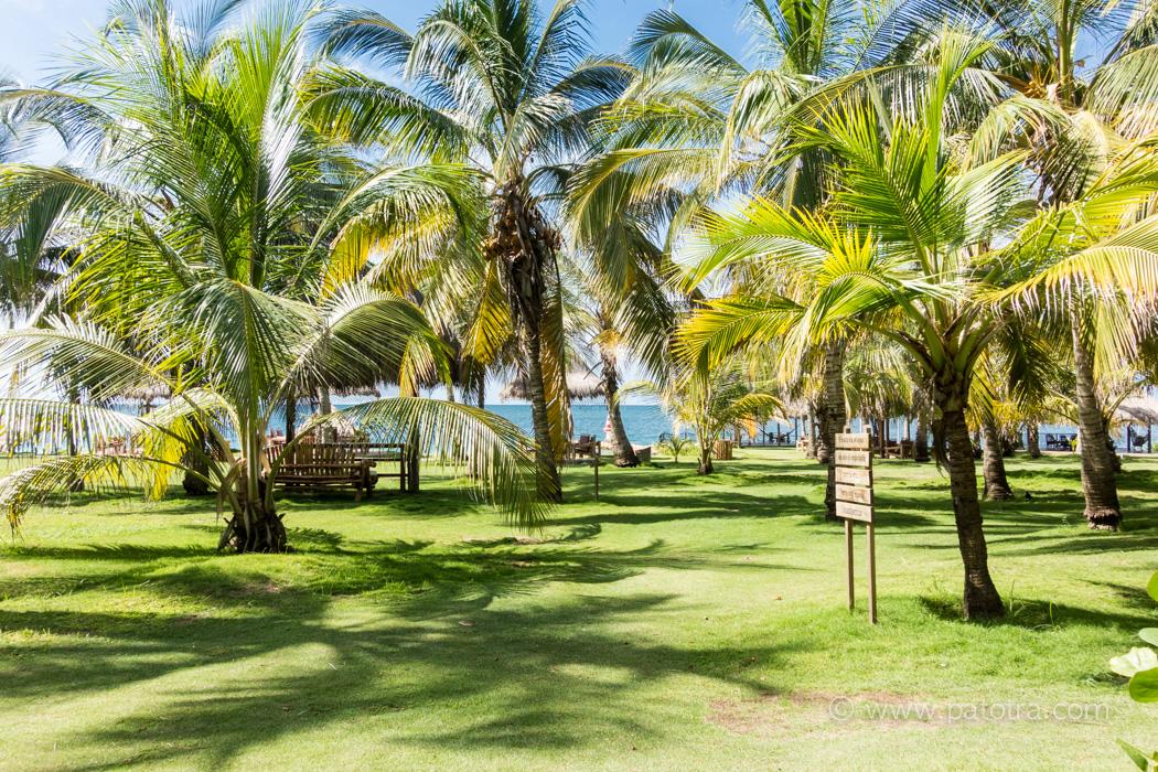 Isla Mucura Hotel Punta Faro Garten