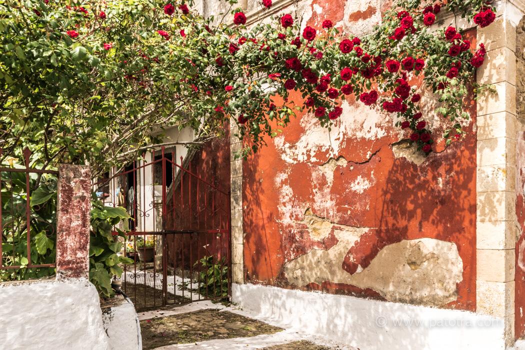Dorfimpressionen Korfu Tagestouren