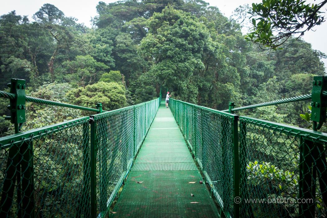 Baumwipfelpfad Monteverde Costa Rica