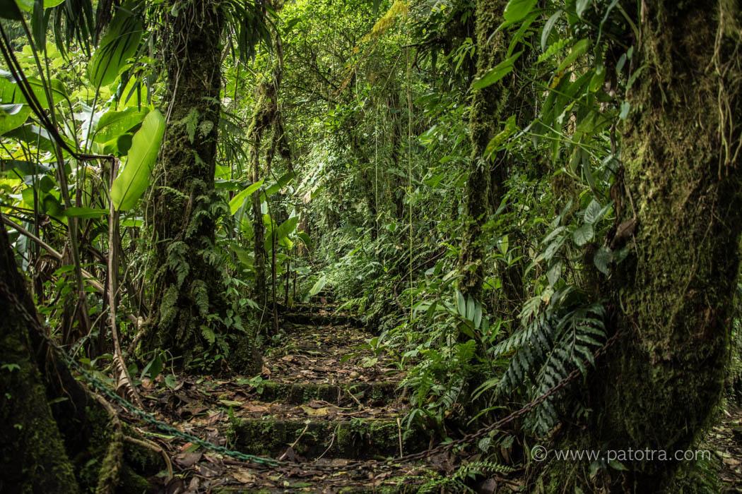Jurassic Park Costa Rica