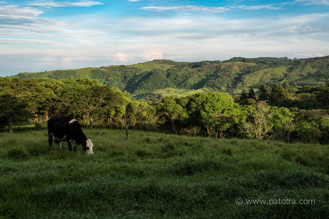 Fahrt El Arenal nach Monteverde Costa Rica