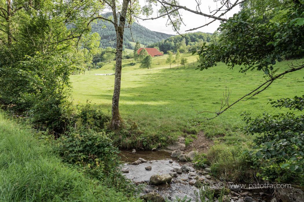 Zweitaelerland Schwarzwald