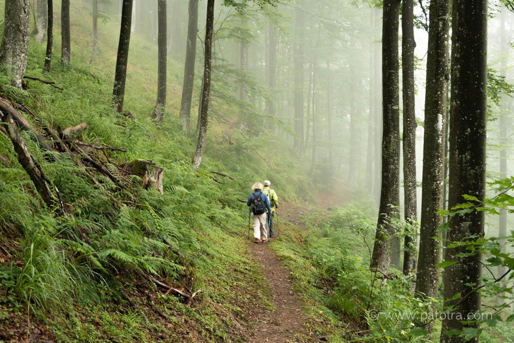 Wanderung Kandel