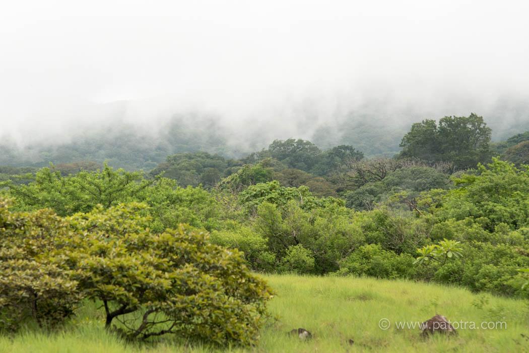 Rundreise Costa Rica Ziel Nationalpark Rincon de la Vieja