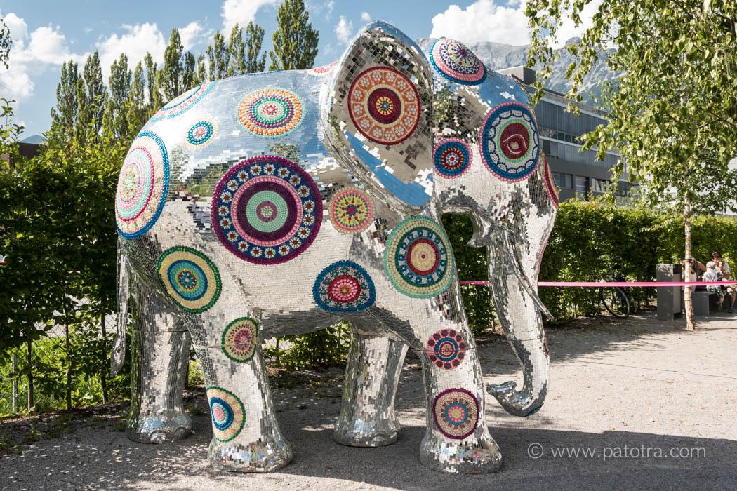 Swarovski Elefant