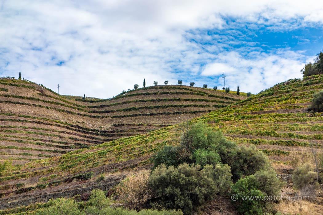 Impressionen Flusskreuzfahrt Douro