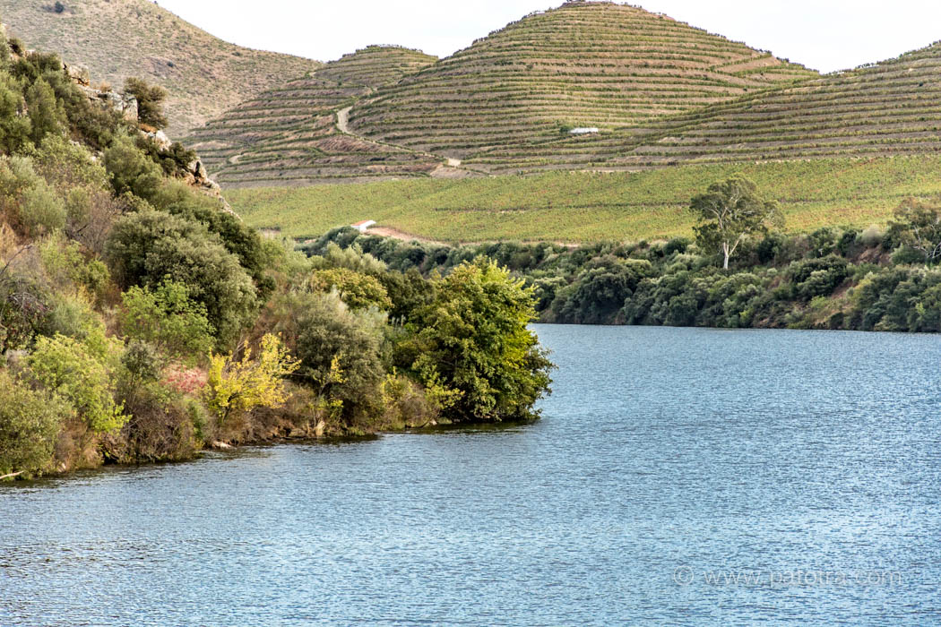 Landschaft Douro Portugal