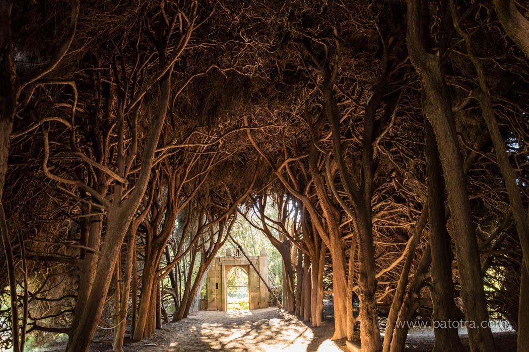 Garten Mateus Palast