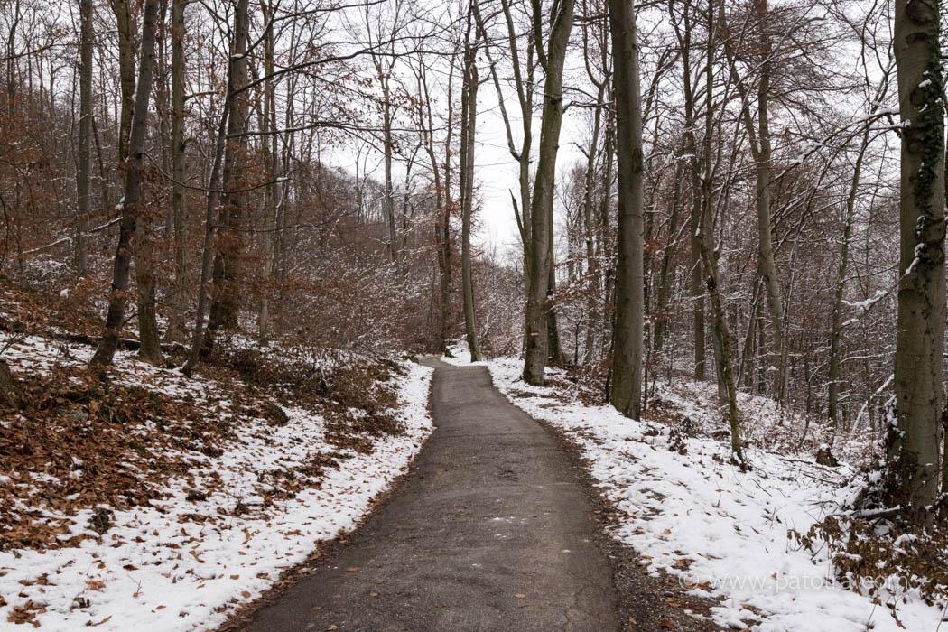 Der Weg zum Franziskischloessl