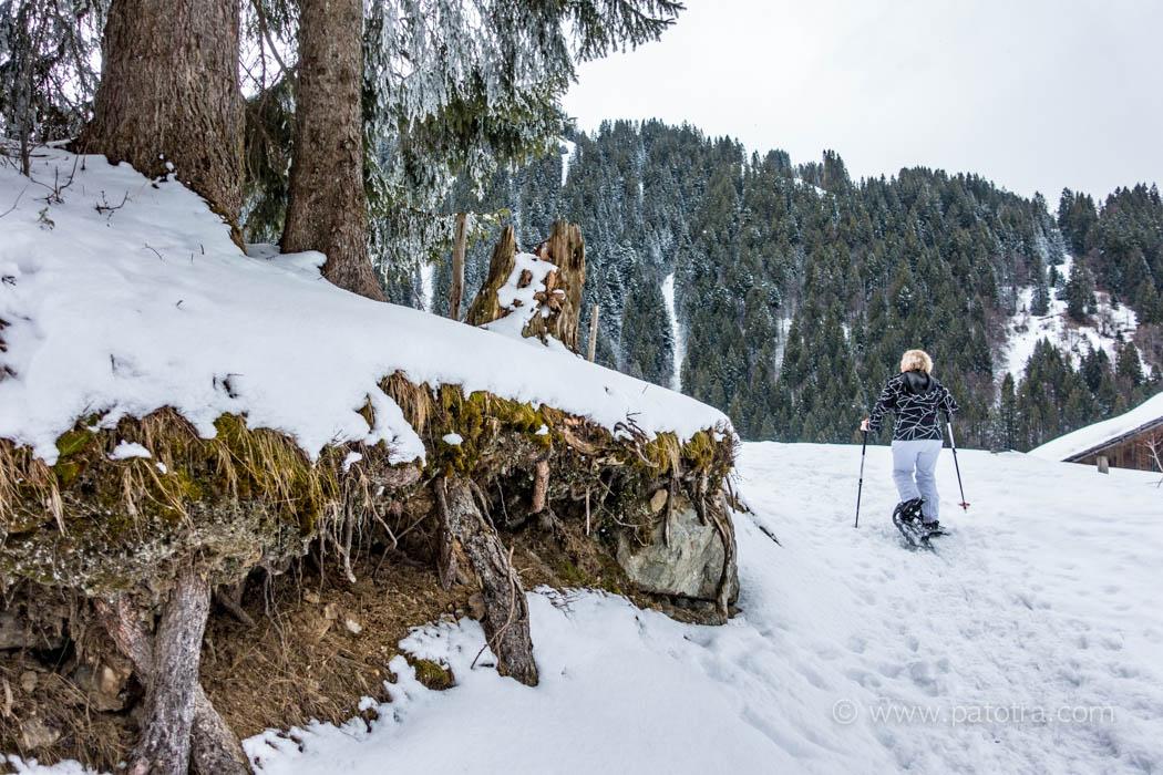 Schneeschuhtour im Montafon