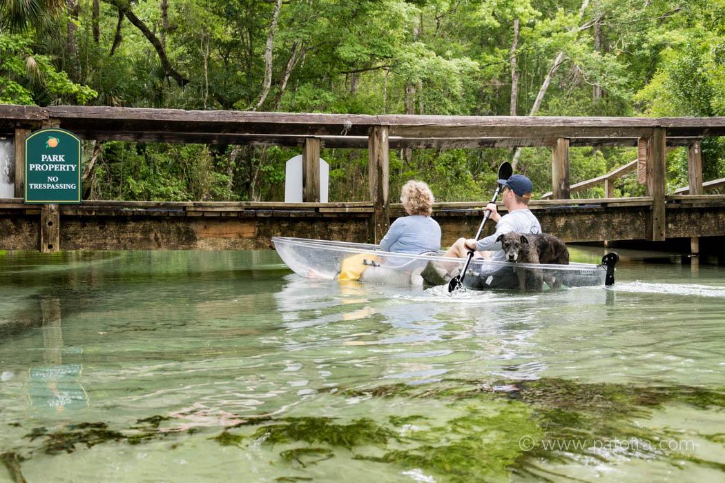 Florida Kelly Park