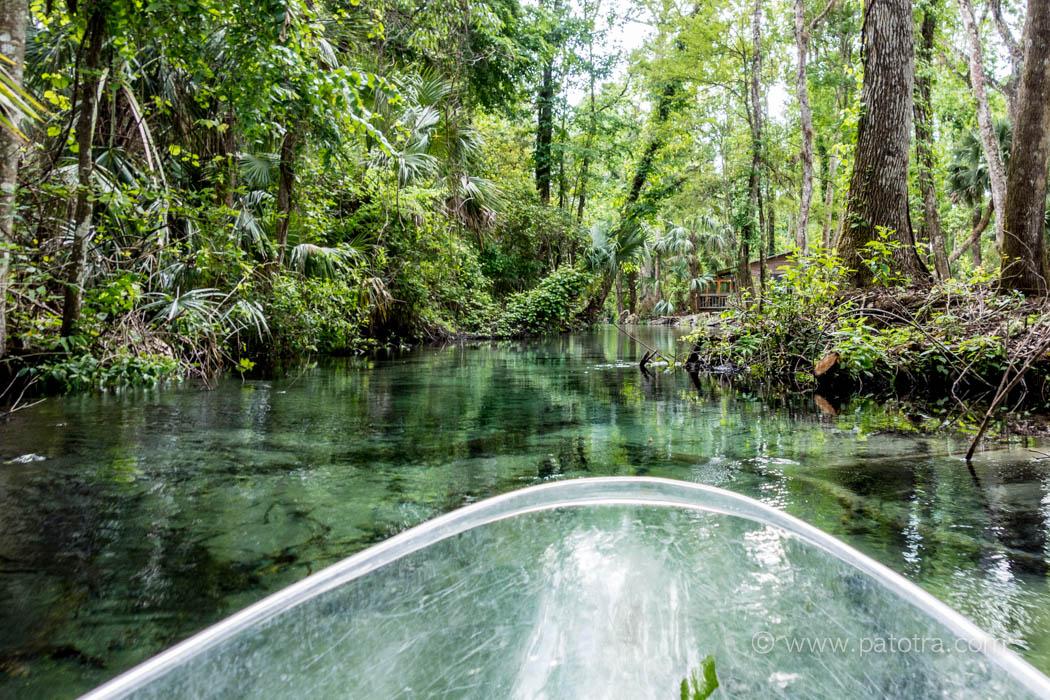 mit transparenten Kajaks durch Florida