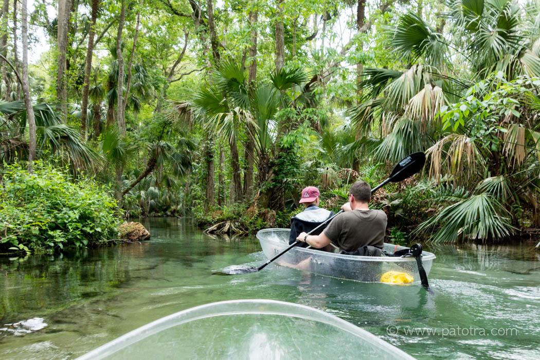 Crystal clear Kayak Florida