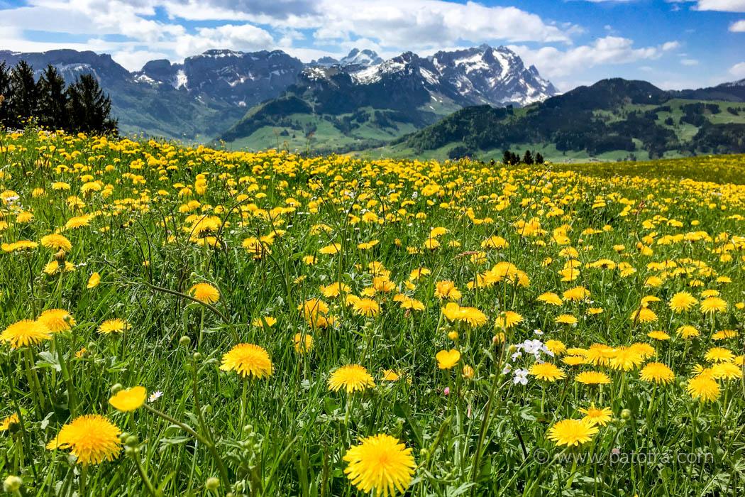 Wandern Appenzell
