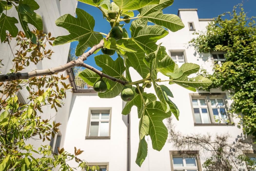 Bodensee Schlosshotel