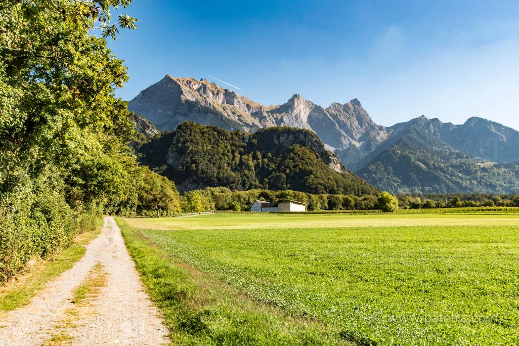 Weinwanderweg Maienfeld Flaesch Buendner Herrschaft