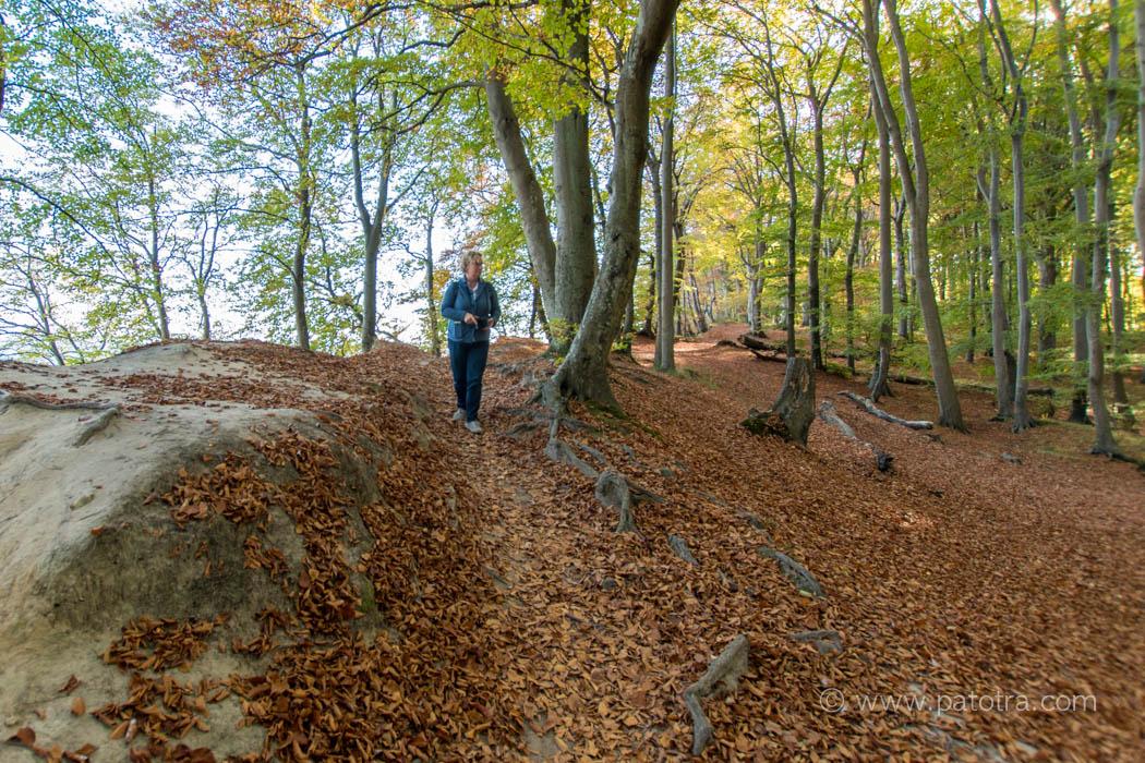 Uferweg im Nationalpark Jasmund