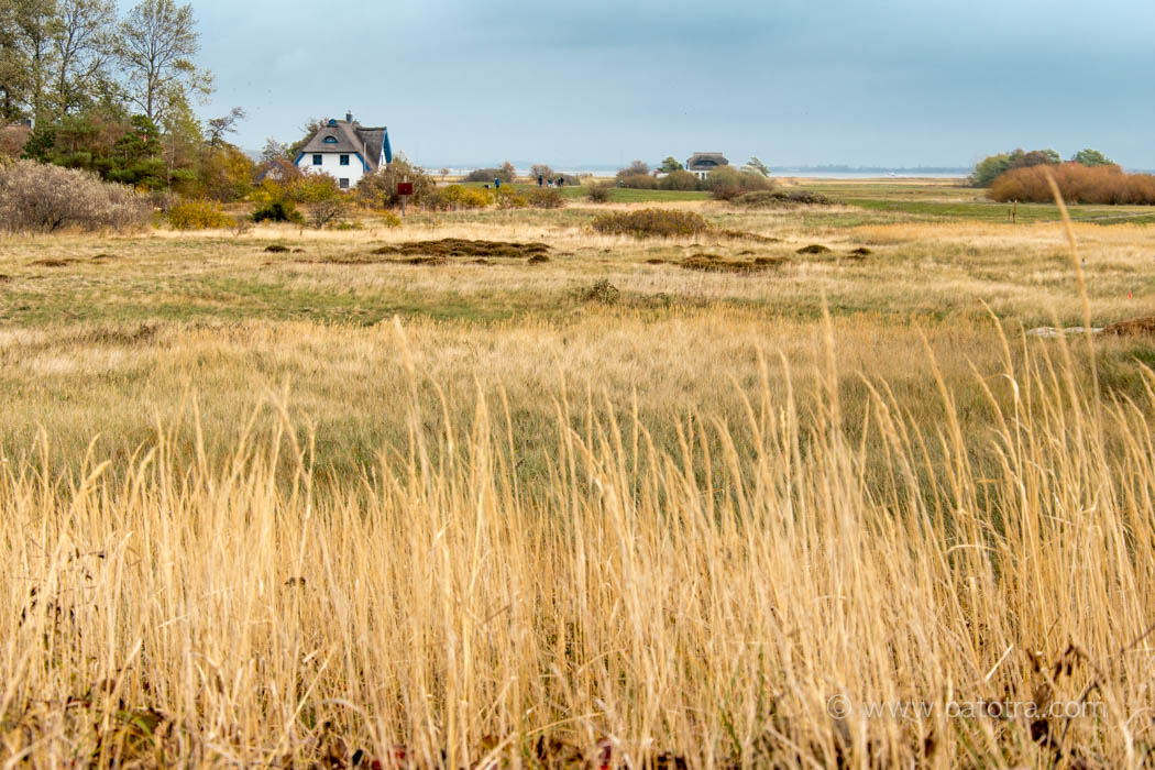 Hiddensee Herbststimmung