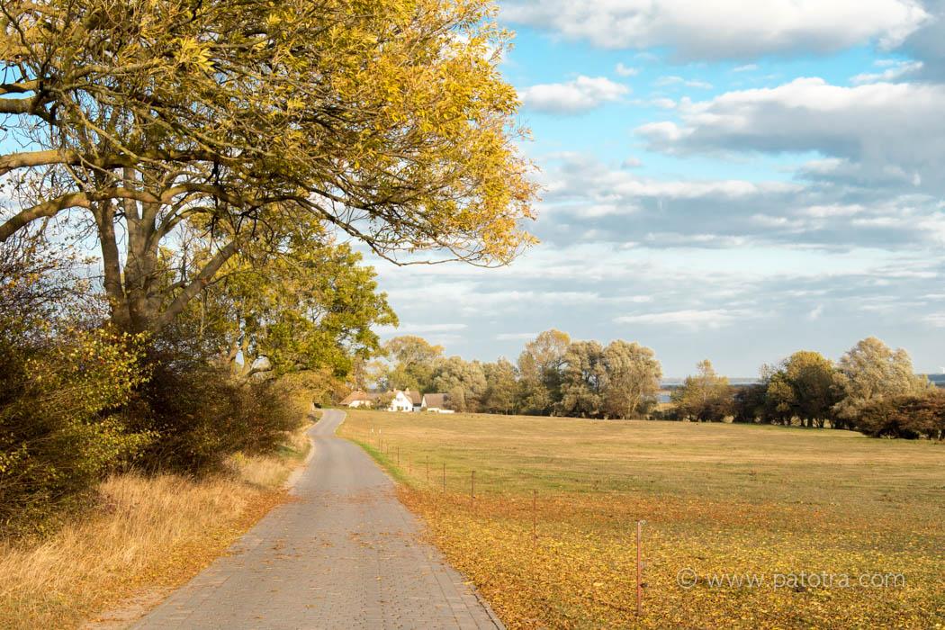 Hiddensee Ostsee Herbst