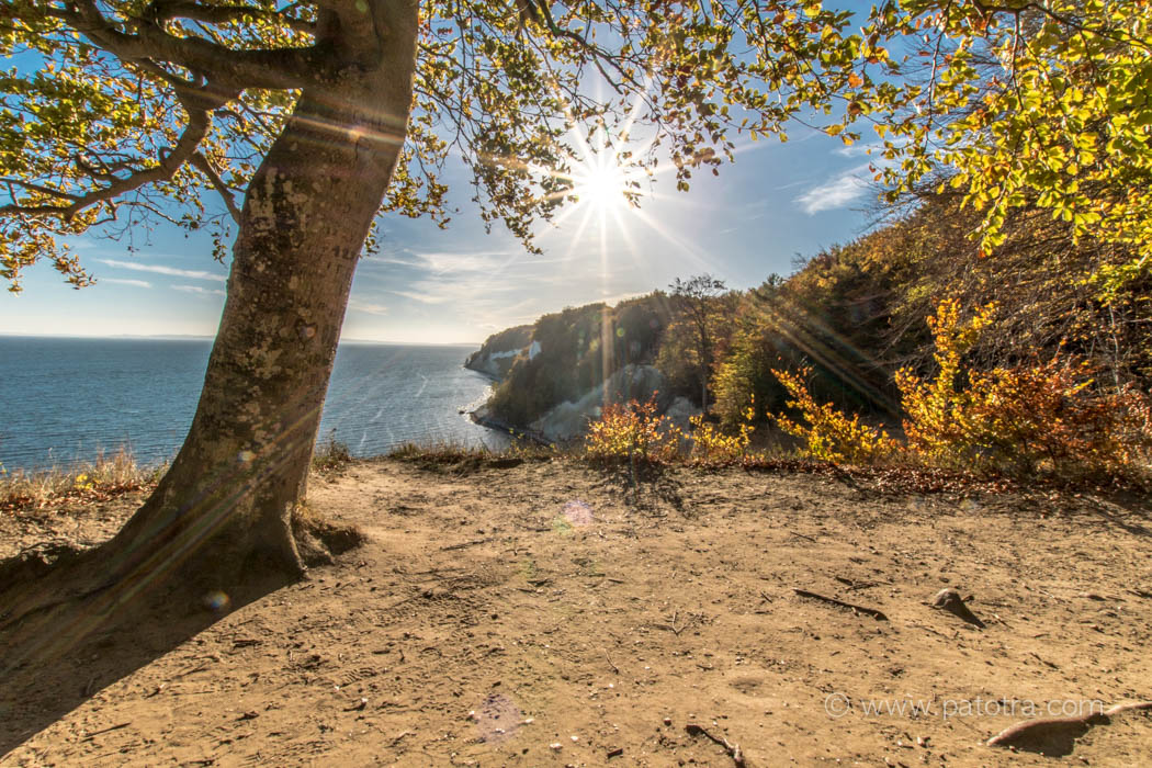 Herbstsonne Ruegen Jasmund