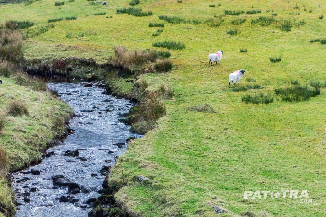 Irland Impressionen