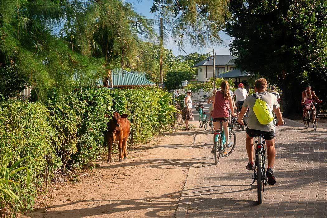 Radfahren auf La Digue
