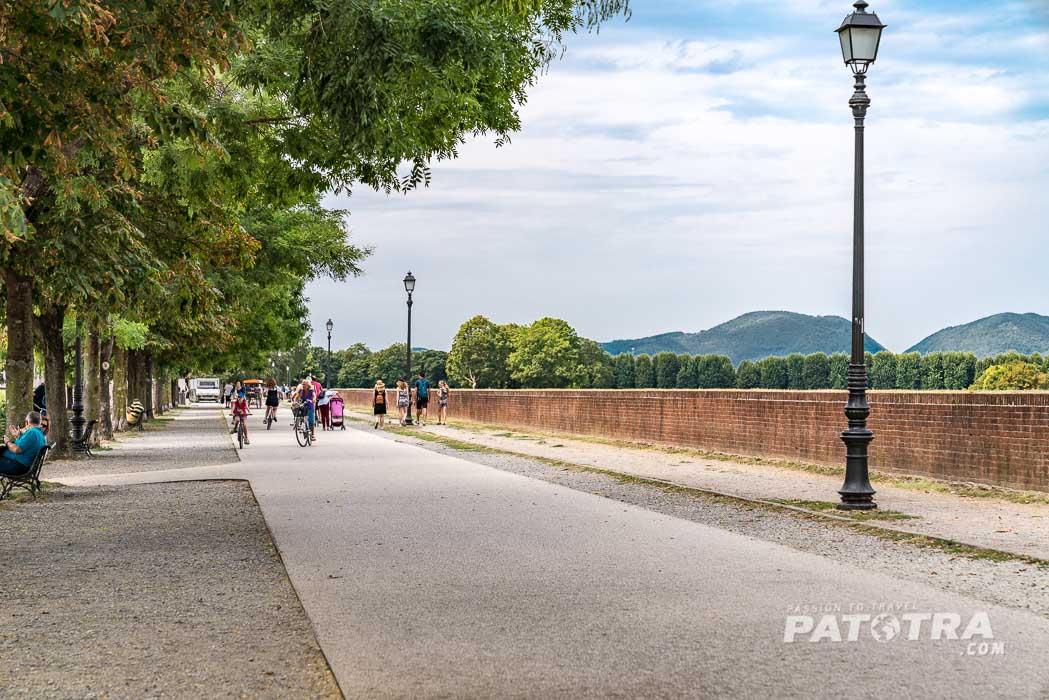 Stadtmauer Pisa